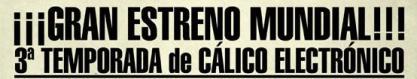calico11.JPG